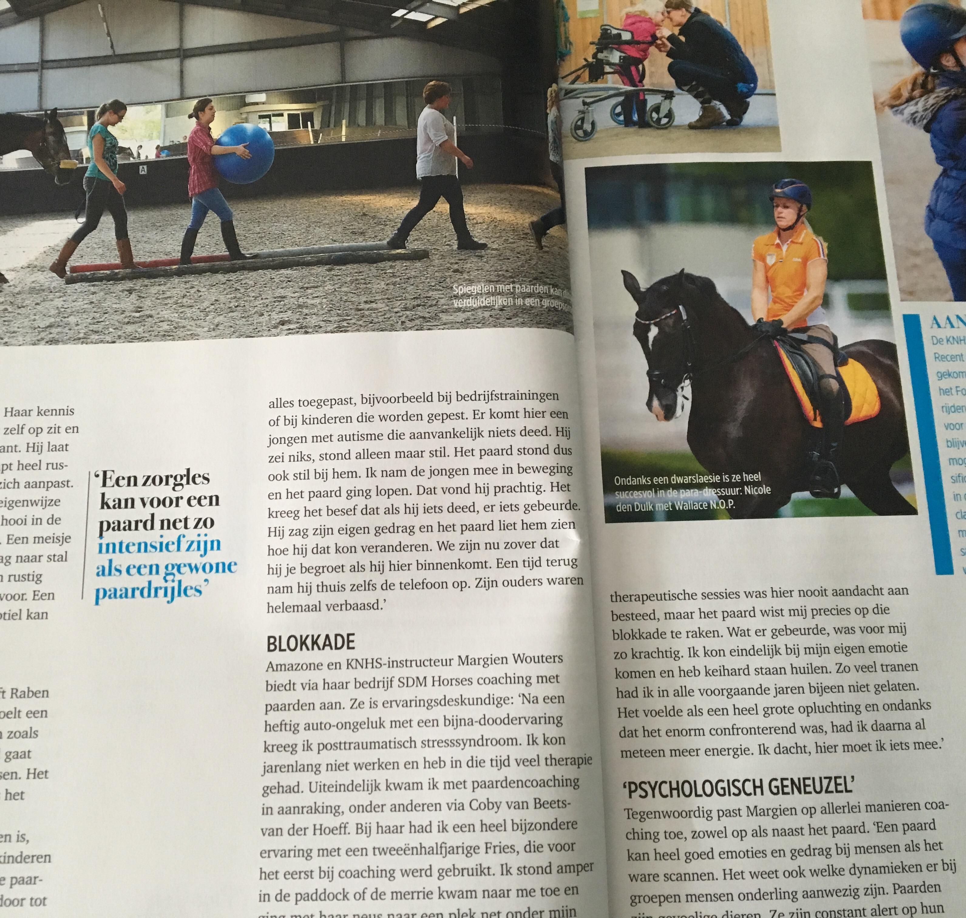 paard en sport 3 paardencoach gelderland nijmegen