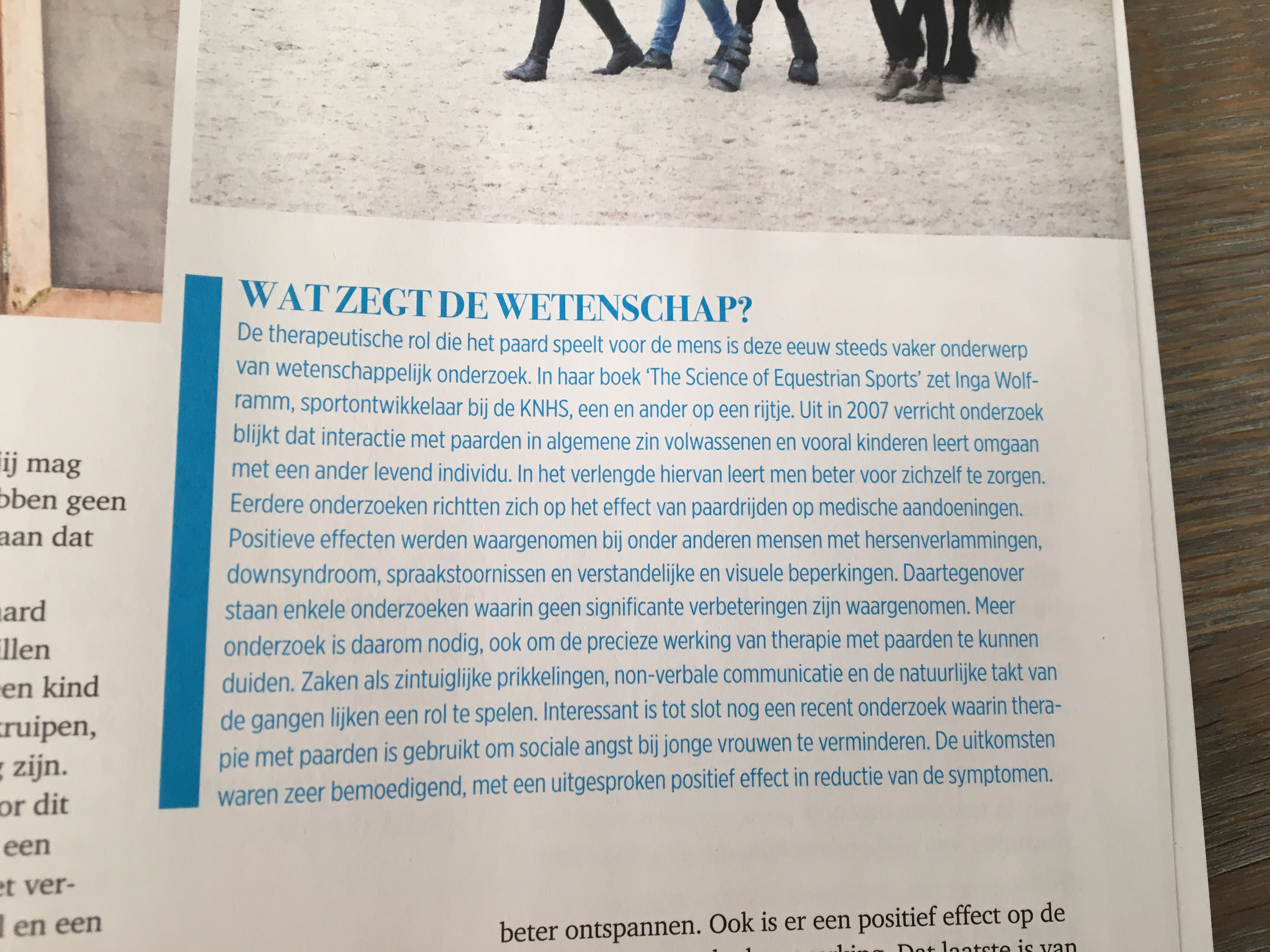 paard en sport 1 paardencoach gelderland