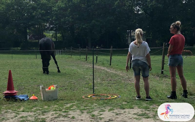 10.Jeanet Bathoorn Paardencoaching Nijmegen
