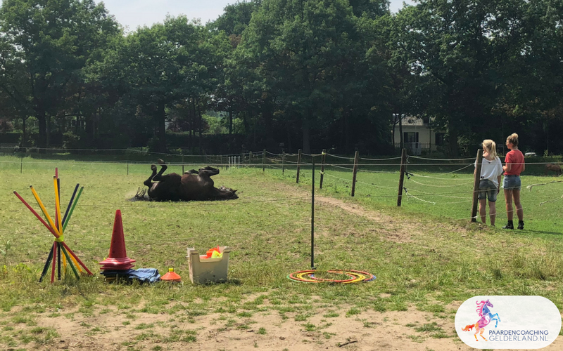 12.Jeanet Bathoorn Paardencoaching Nijmegen