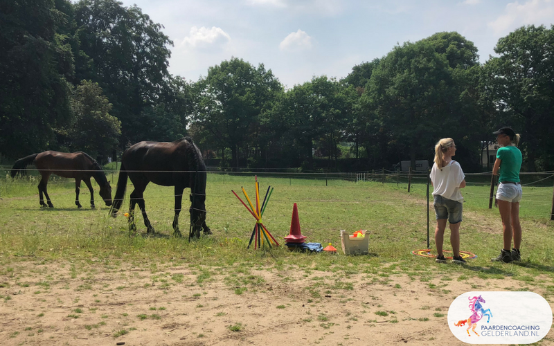 13.Jeanet Bathoorn Paardencoaching Nijmegen