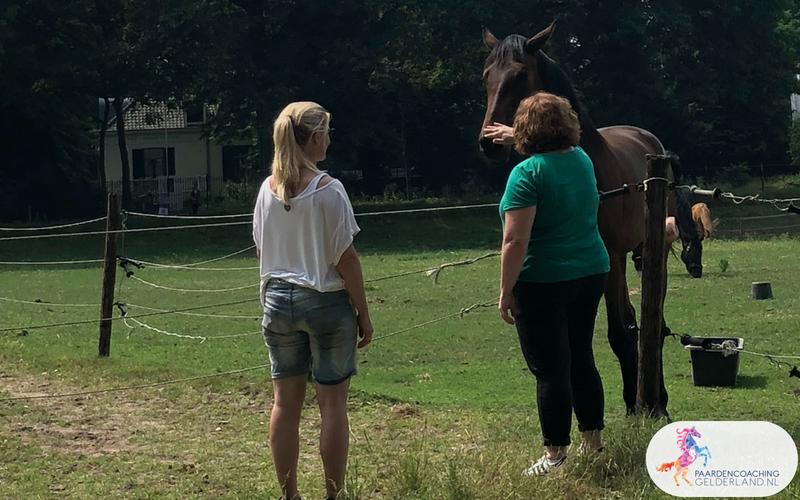16.Jeanet Bathoorn Paardencoaching Nijmegen