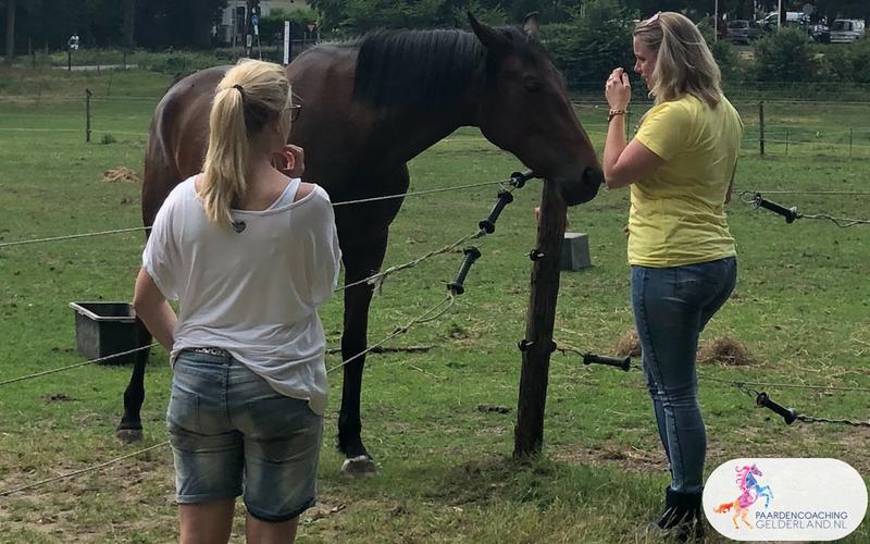 21.Jeanet Bathoorn Paardencoaching Nijmegen
