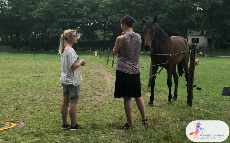27.Jeanet Bathoorn Paardencoaching Nijmegen