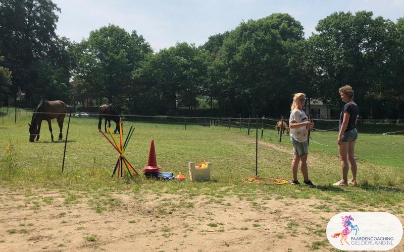 6.Jeanet Bathoorn Paardencoaching Nijmegen