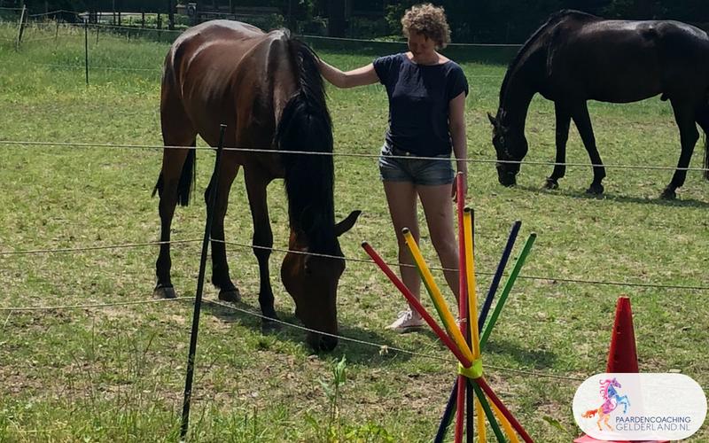 9.Jeanet Bathoorn Paardencoaching Nijmegen