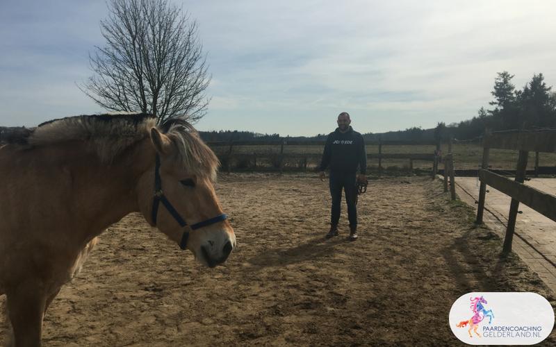 10.Leiderschapstraining paarden teamtripper JCI Ede Laag Soeren april 2018