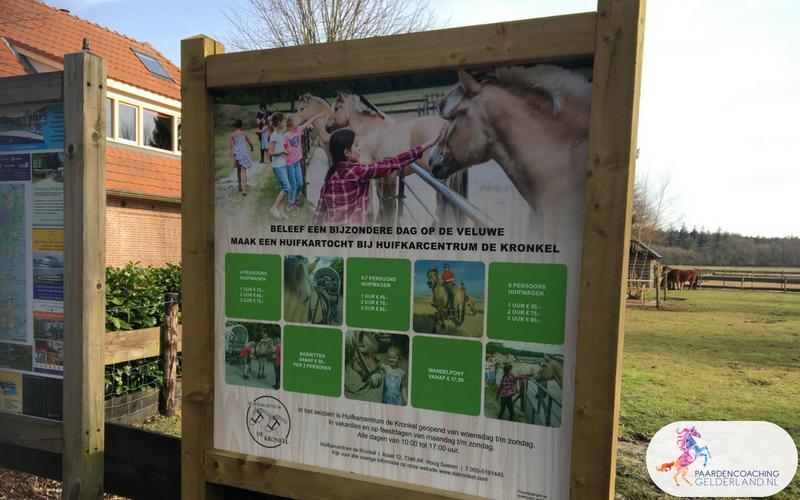 3.Leiderschapstraining paarden teamtripper JCI Ede Laag Soeren april 2018