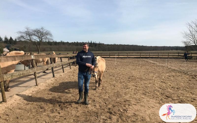 8.Leiderschapstraining paarden teamtripper JCI Ede Laag Soeren april 2018