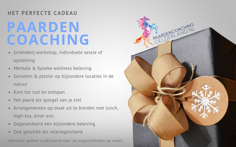 1.Paardencoaching Gelderland Lentefair Bennekom