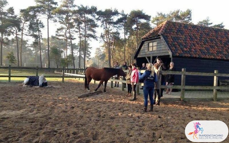 24.Paardencoaching Gelderland Lentefair Bennekom