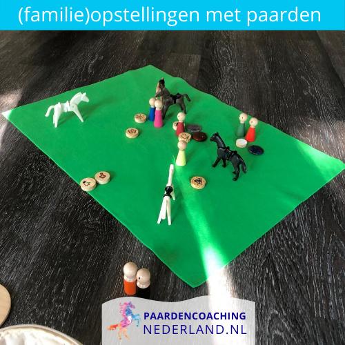 2.familieopstellingen-paarden-gelderland-nederland-5x5