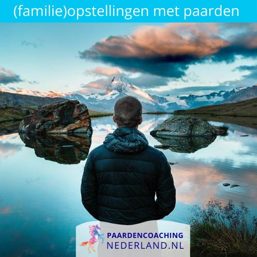 5.-familieopstellingen-paarden-gelderland-nederland-5x5