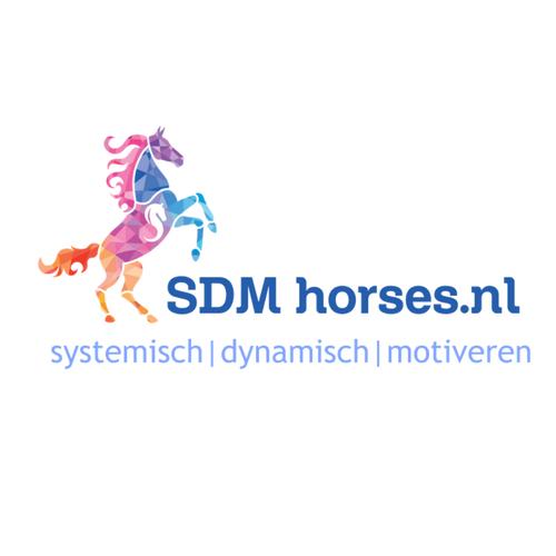 10.paardenkracht voor pubers gelderland