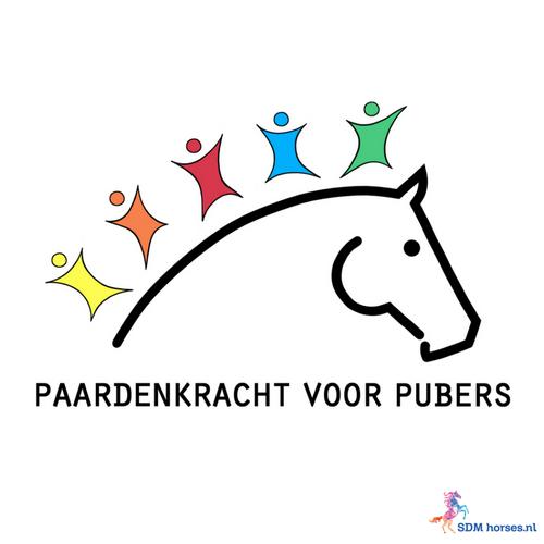 3.paardenkracht voor pubers gelderland