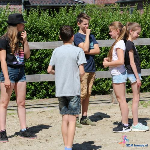 4.paardenkracht voor pubers gelderland