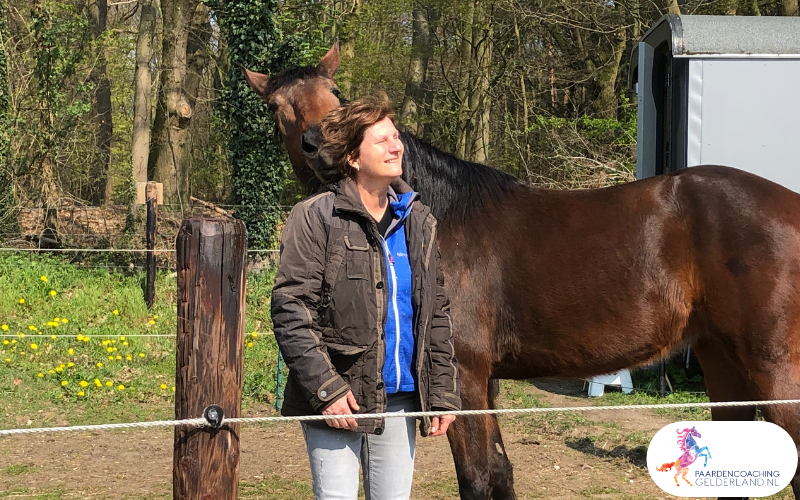 10.workshop-hsp.workshop-HSP-paardencoaching-nijmegen-2019.workshop-HSP-paardencoaching-nijmegen-2019