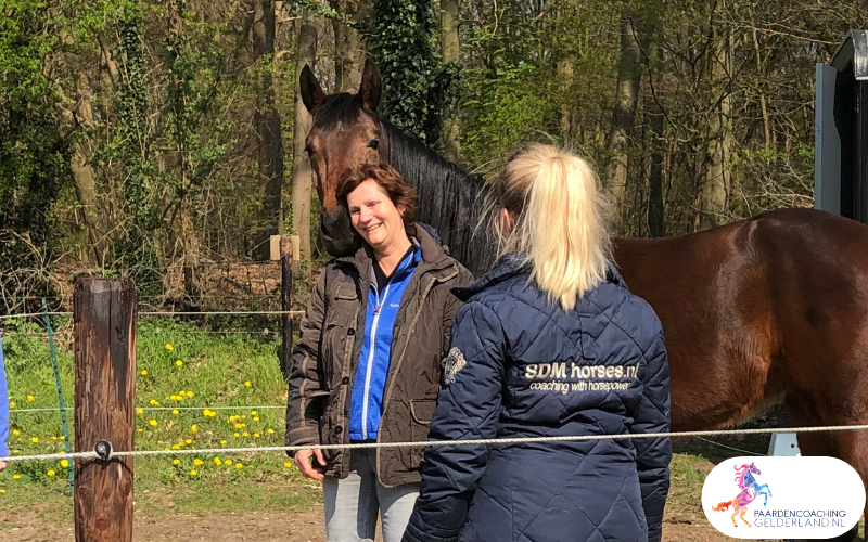 14.workshop-HSP-paardencoaching-nijmegen-2019.workshop-HSP-paardencoaching-nijmegen-2019