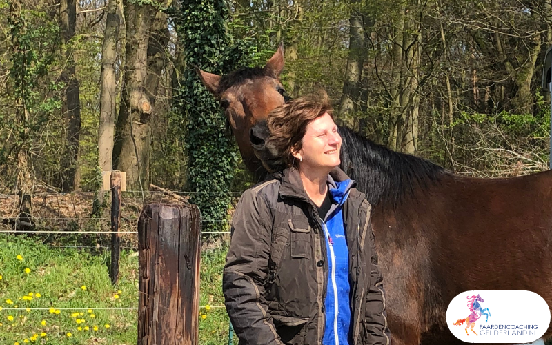 15.workshop-HSP-paardencoaching-nijmegen-2019.workshop-HSP-paardencoaching-nijmegen-2019