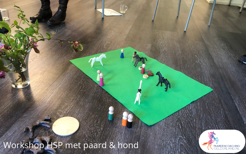 2.workshop-HSP-paardencoaching-nijmegen-2019.workshop-HSP-paardencoaching-nijmegen-2019