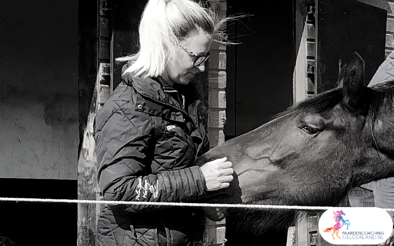 26.workshop-HSP-paardencoaching-nijmegen-2019.workshop-HSP-paardencoaching-nijmegen-2019