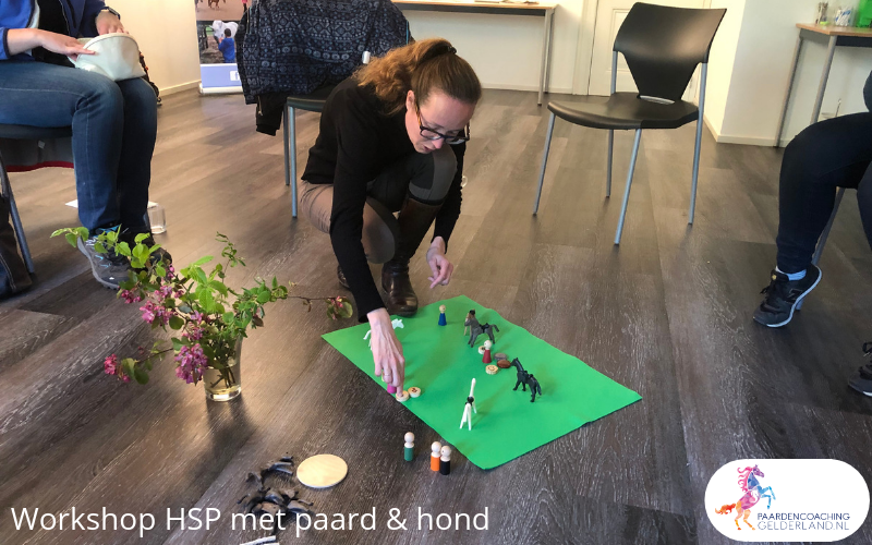 3.workshop-HSP-paardencoaching-nijmegen-2019.workshop-HSP-paardencoaching-nijmegen-2019