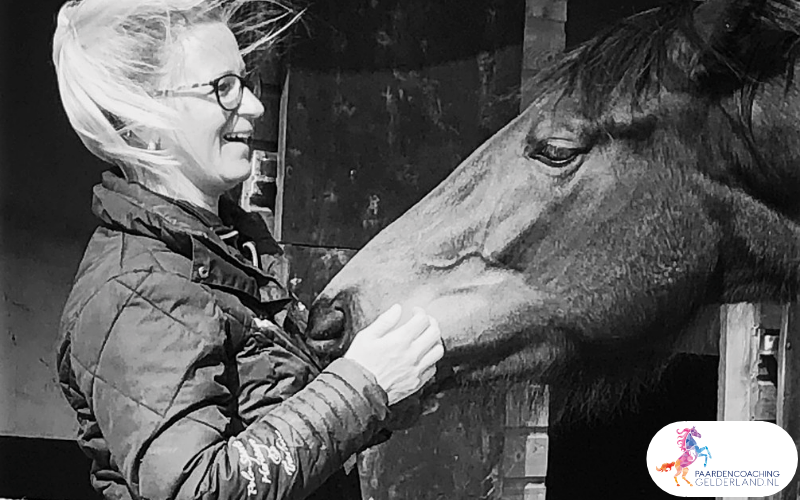 3.workshop-hsp.workshop-HSP-paardencoaching-nijmegen-2019.workshop-HSP-paardencoaching-nijmegen-2019