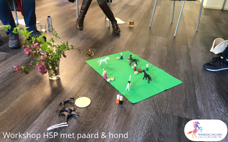 4.workshop-HSP-paardencoaching-nijmegen-2019.workshop-HSP-paardencoaching-nijmegen-2019