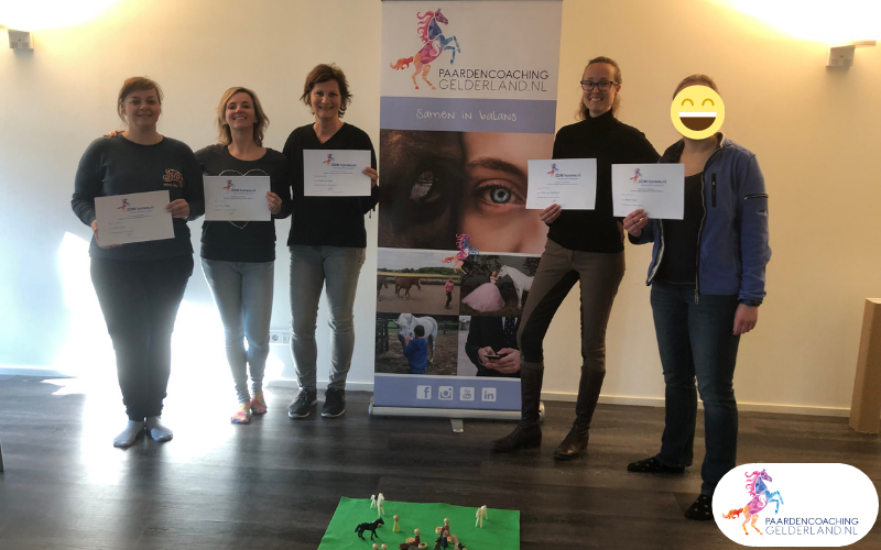 6.workshop-hsp.workshop-HSP-paardencoaching-nijmegen-2019.workshop-HSP-paardencoaching-nijmegen-2019