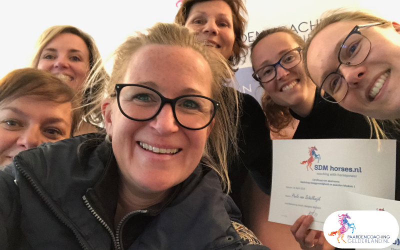 7.workshop-hsp.workshop-HSP-paardencoaching-nijmegen-2019.workshop-HSP-paardencoaching-nijmegen-2019