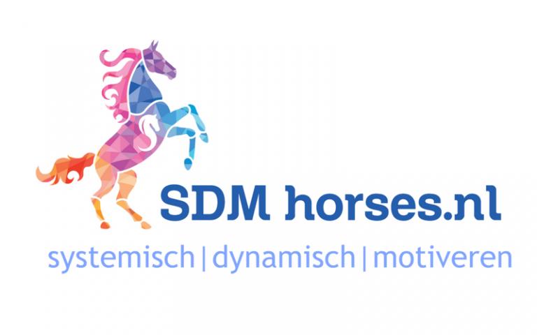 paarden coach gelderland 8x6 2