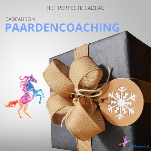 Cadeaubon Paardencoaching