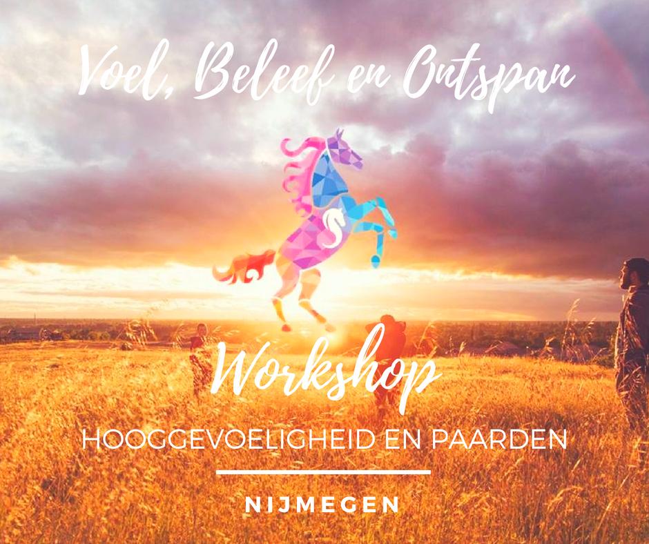 Workshop HSP als kracht met paarden en hond