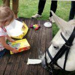Waarom paardencoaching goed is voor kinderen.